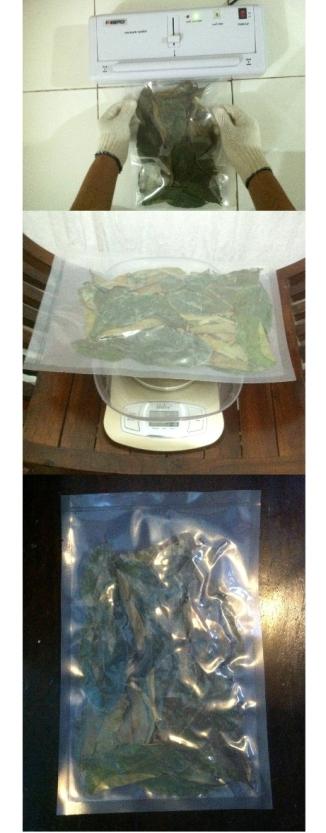 50 grams of dried soursop leaves