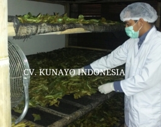 dried soursop leaves 2
