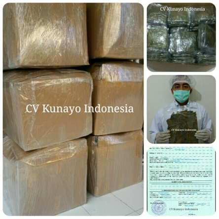 Export to Germany