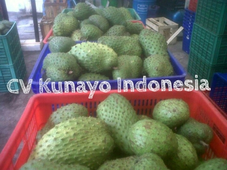 soursop-fruit